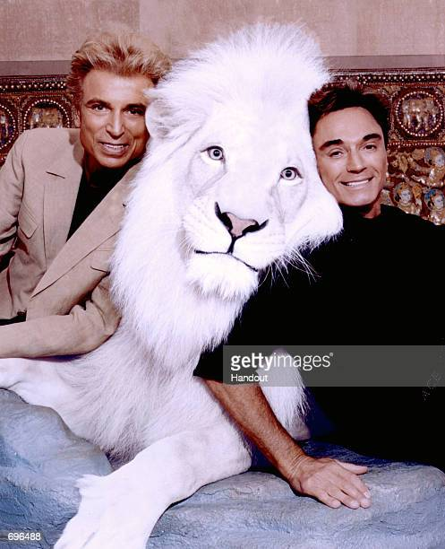 Worldrenowned illusionists and conservationists Siegfried Roy pose with Pride the Magical White Lion in this undated photo The Las Vegas entertainers...