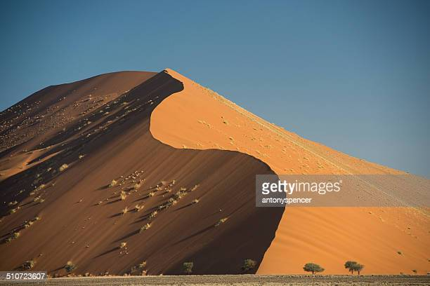 Worlds largest sand dunes at Sossusvlei, Africa.
