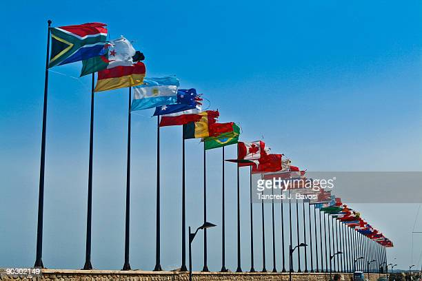 worldwide flags herbs provence france - bavosi stock pictures, royalty-free photos & images