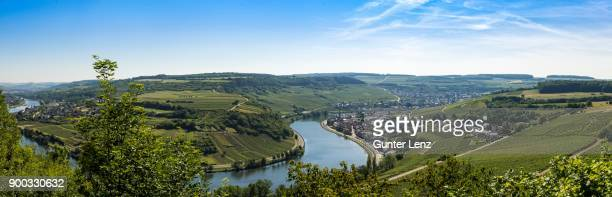 wormeldange on the moselle and vineyards, view from grevenmacher, luxembourg - moselle france stock pictures, royalty-free photos & images