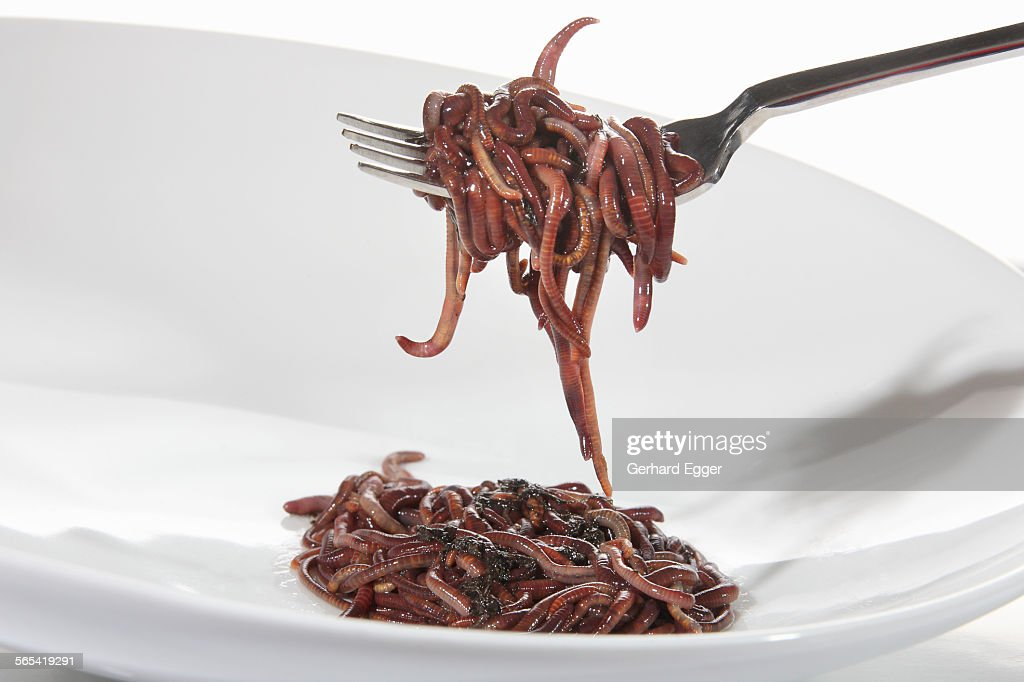 Worms on fork and plate : Stock Photo
