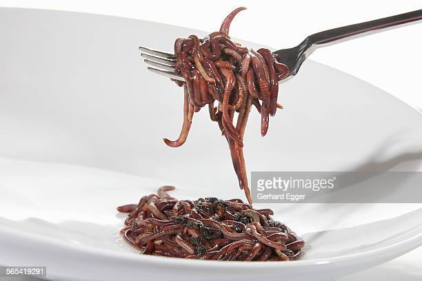 Worms on fork and plate