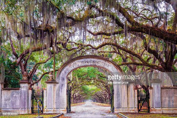 Wormsloe Entrance, Savannah, Georgia, America