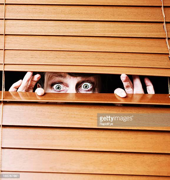 worried wide-eyed older woman peeps through slats of wooden blind - witness stock pictures, royalty-free photos & images