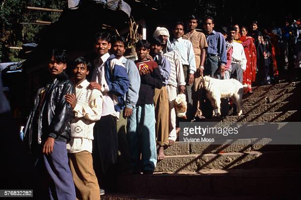 Worshipers at a temple line up to offer flowers and animals during a festival.