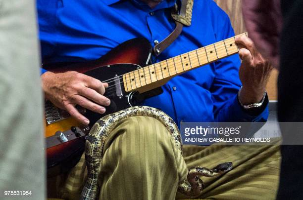 A worshipper plays the guitar as a timber rattlesnake rests on his lap during a Pentecostal serpent handlers service at the House of the Lord Jesus...