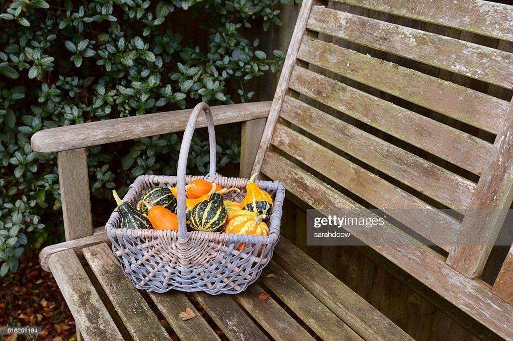 Woven basket full of orange, green and yellow ornamental gourds : Foto de stock