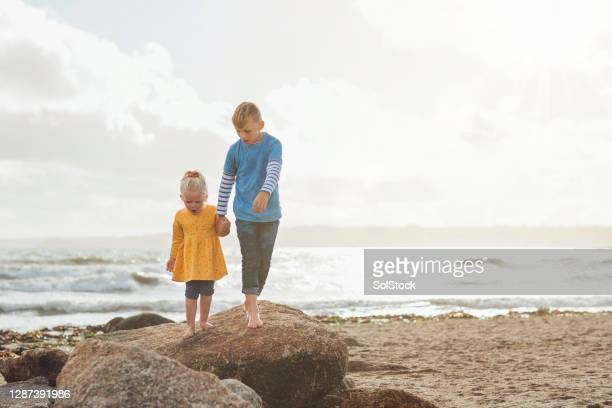 wow what is that?! - beach stock pictures, royalty-free photos & images