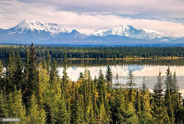 wrangell mountain range seen from willow lake near kenny lake town, alaska - paisajes de alaska fotografías e imágenes de stock