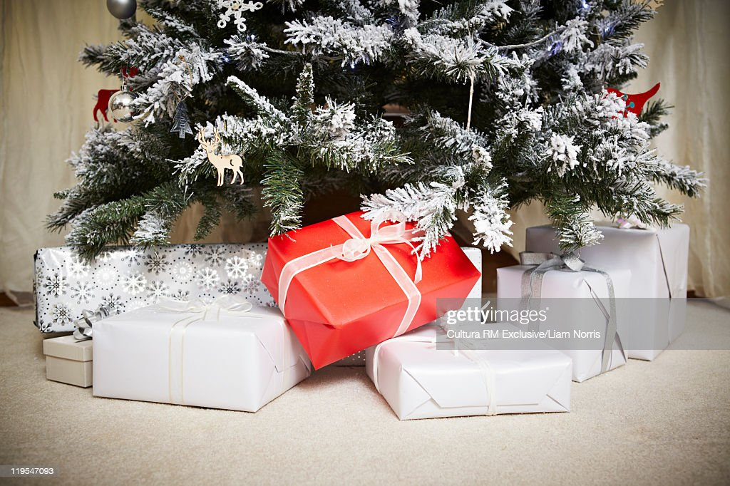 Wrapped gifts underneath Christmas tree : ストックフォト