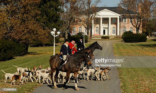 Wrapping up the hunt Anne McIntosh bottom Dennis Downing center and Catherine Stimpson top lead foxhounds back to a trailer as the Blue Ridge Hunt...