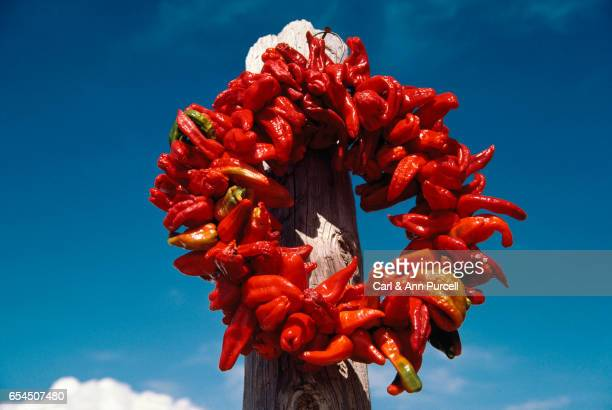 Wreath of Chili Peppers in the Sun