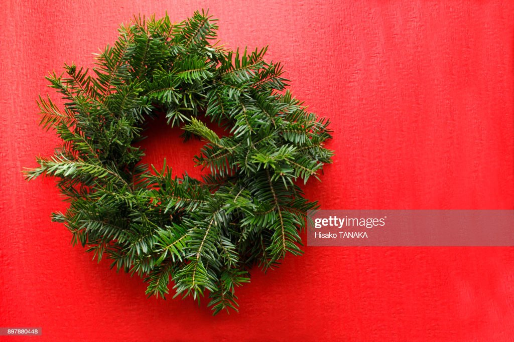 wreath of the fir tree : Stock Photo