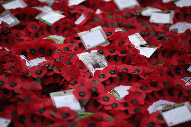 Wreaths lay at the foot of the Cenotaph after the Remembrance Day Sunday service on November 8 2009 in London England This year marks the 70th...