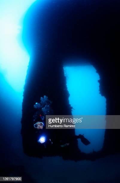 wreck diving. - オランダ領リーワード諸島 ストックフォトと画像