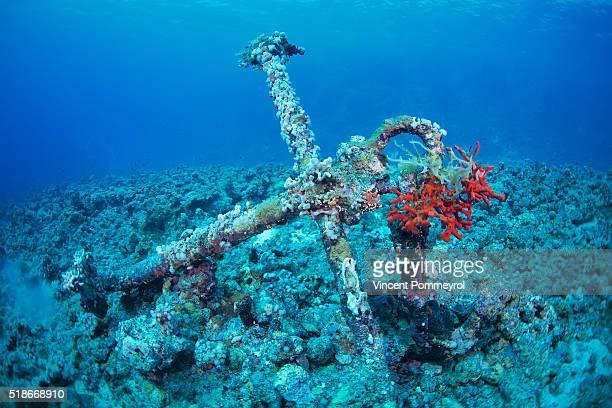 wreck sea - いかり ストックフォトと画像