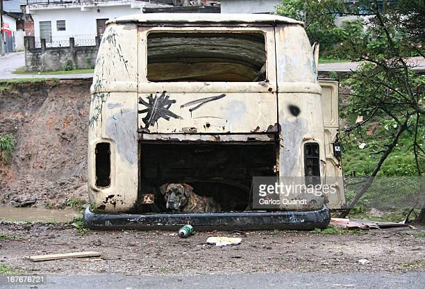 CONTENT] A wrecked VW bus sits on a muddy riverbank at Vila Torres shantytown Curitiba Brazil On a rainy day in September 2005 a stray dog found the...