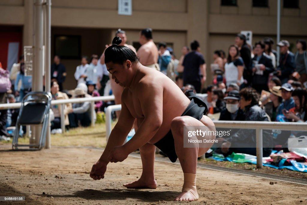 Yasukuni Shrine Ceremonial Sumo Tournament : ニュース写真