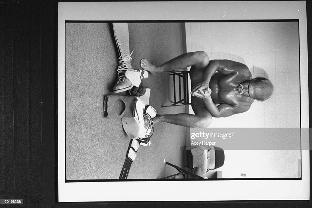 Hulk Hogan Nude Pictures