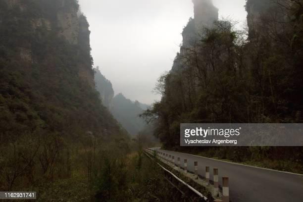 wulingyuan towering peaks, pandora world, hunan, china - pandora peaks stock photos and pictures