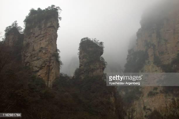 wulingyuan towering peaks, pandora world, hunan, china - pandora peaks fotografías e imágenes de stock