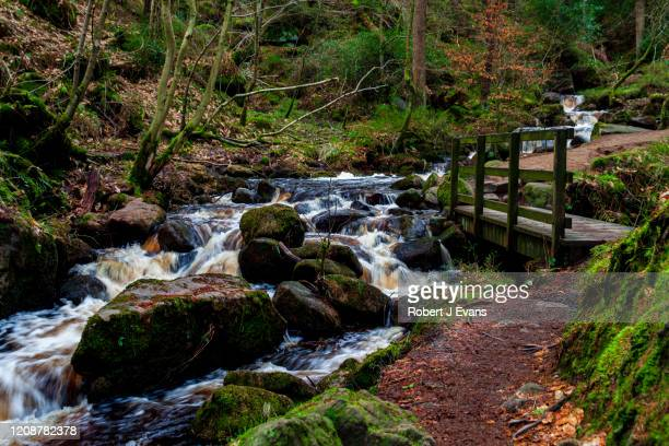 wyming brook nature reserve, peak district, yorkshire, u.k. - nature reserve stock pictures, royalty-free photos & images