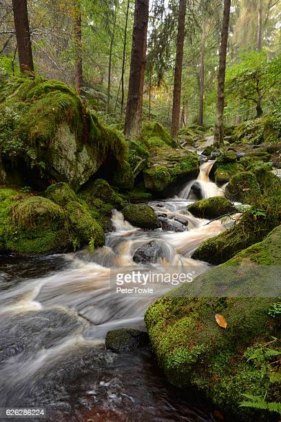 wyming brook, peak district,near sheffield, uk - south yorkshire stock pictures, royalty-free photos & images