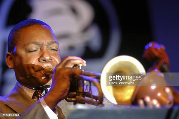 Wynton Marsalis, trumpet performs at the North Sea Jazz Festival on July 12th 2003 in Amsterdam, Netherlands.
