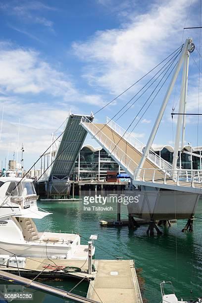 Wynyard Crossing bascule bridge in Auckland