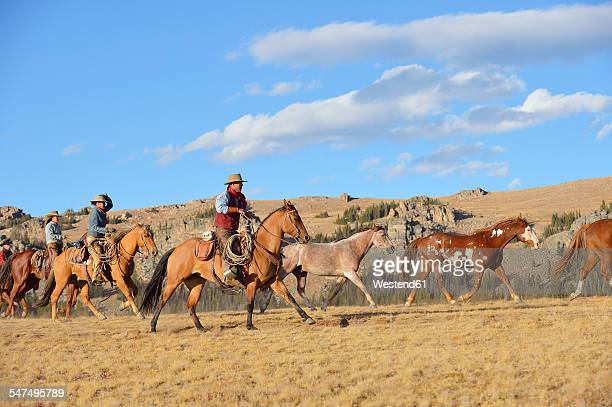 USA, Wyoming, cowboy and cowgirls herding horses in wilderness
