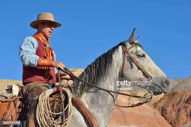 usa, wyoming, cowboy on his horse in badlands - rein stock pictures, royalty-free photos & images