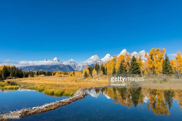 usa, wyoming, grand teton national park, view to teton range with snake river in the foreground - beaver dam stock pictures, royalty-free photos & images
