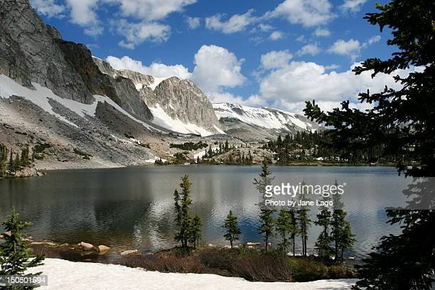 wyoming - national forest stock pictures, royalty-free photos & images