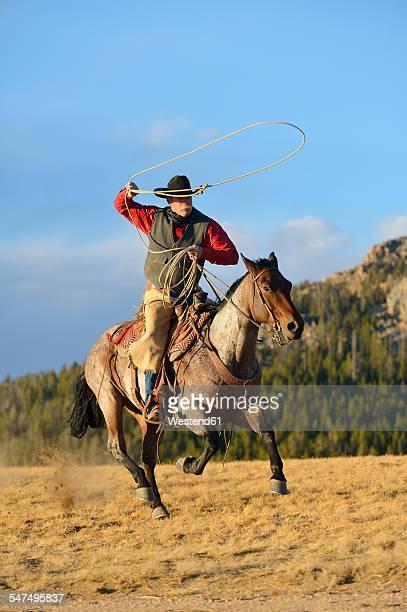 USA, Wyoming, riding cowboy swinging lasso