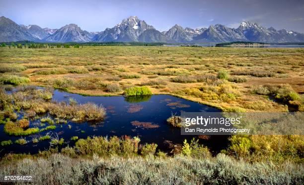 usa, wyoming, rocky mountains, teton range, grand teton national park, toned - dan peak stock photos and pictures