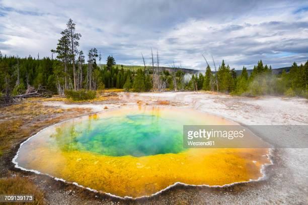 usa, wyoming, yellowstone national park, morning glory pool - unesco werelderfgoed stockfoto's en -beelden