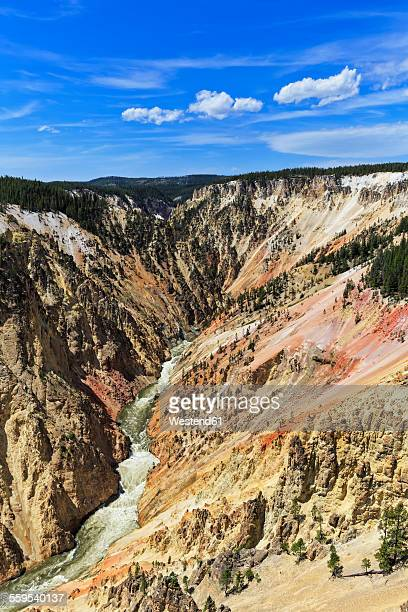 usa, wyoming, yellowstone national park, view to yellowstone river, grand canyon of the yellowstone - yellowstone river stock photos and pictures