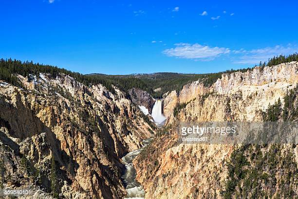 usa, wyoming, yellowstone national park, yellowstone river, grand canyon of the yellowstone, lower yellowstone falls - yellowstone river stock photos and pictures