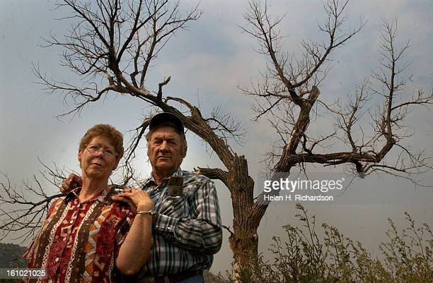 HORSE WYOMINGBill and Marge West <cq> stand in front of one of the nearly 200 Cottonwood trees that are dead or dying on their property in Spotted...