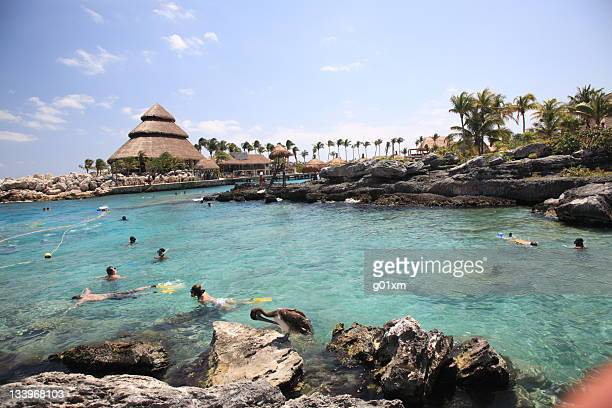 xcaret, mexico - mayan riviera stock photos and pictures