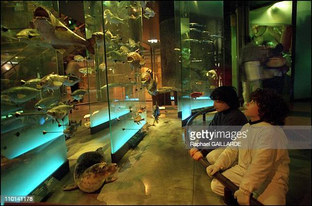 Xeroderma Pigmentosum a rare genetic disease Twins hide to survive in Paris France in October 2001 In the Great Gallery of the Evolution in Paris'...