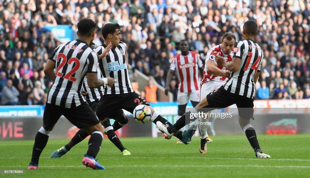 Newcastle United v Stoke City - Premier League : News Photo