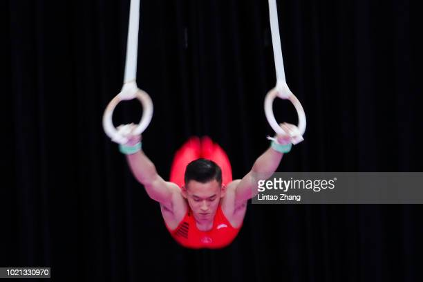Xiao Ruoteng of China competes on the men's Rings during the Artistic Gymnastics at the Jiexpo Hall on day four of the Asian Games on August 22, 2018...
