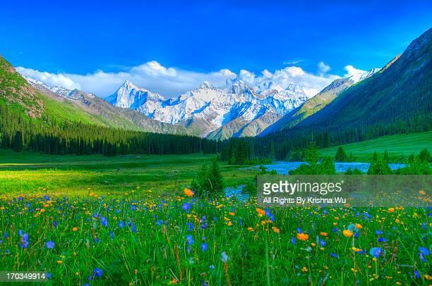 Xiata Valley, Ili, Xinjiang