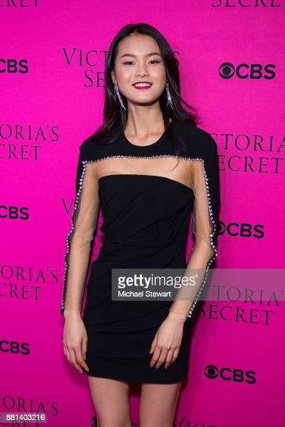 Xin Xie attends the 2017 Victoria's Secret Fashion Show viewing party pink carpet at Spring Studios on November 28 2017 in New York City