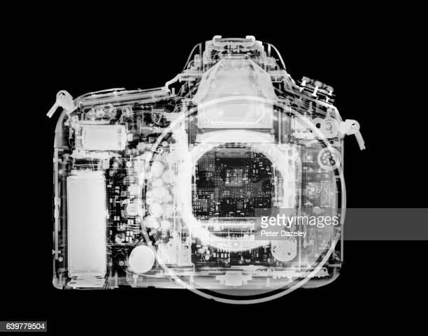 X-ray of a digital single lens reflex camera