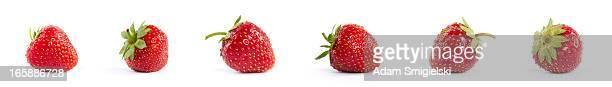 xxxl des fraises - fraise photos et images de collection
