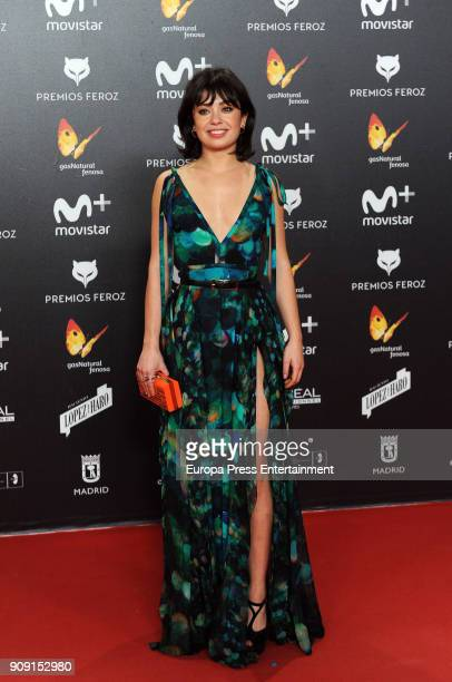 xxxx attends Feroz Awards 2018 at Magarinos Complex on January 22 2018 in Madrid Spain