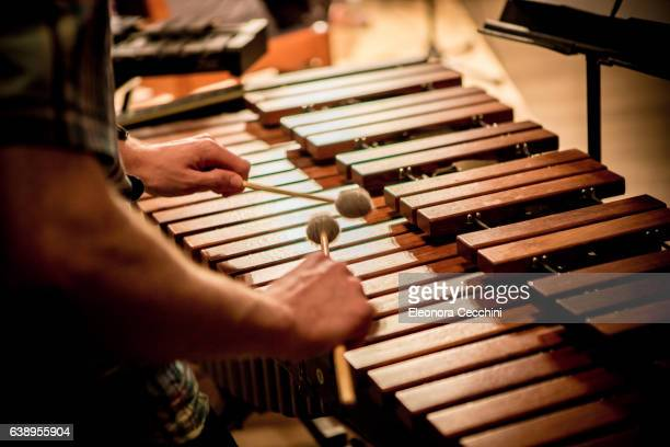 Xylophone detail