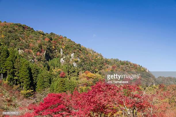 yabakei gorge, oita prefecture, kyushu, japan - 大分県 ストックフォトと画像